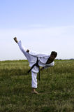 Young male taekwondo fighter attacking Stock Images