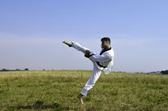 Young male taekwondo fighter attacking Stock Photo