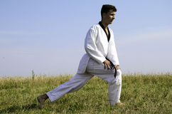 Young male taekwondo fighter stretching Royalty Free Stock Photo