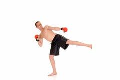 Young male thai boxer Stock Photos