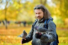 Young male tourist feeding pigeons in St James`s Park in London, United Kingdom, on beautiful sunny autumn day. Young male tourist feeding pigeons in St James`s Stock Photo
