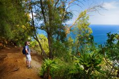 Young male tourist hiking on beautiful Pololu loop trail located near Kapaau, Hawaii, that features beautiful wild flowers and stu. Nning views to the Pololu Stock Photography