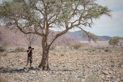 Young male photographer taking photo under the Savanna tree. Young male traveler and photographer taking photo of African animals under the Savanna tree in Stock Image