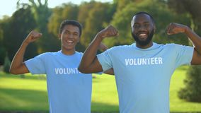 Young male volunteers showing arm muscles, strength gesture, teamwork support stock footage