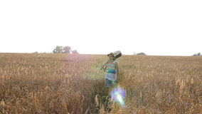 Young man with acoustic guitar at the wheat field. stock video
