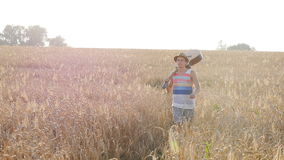 Young man with acoustic guitar at the wheat field. stock video footage