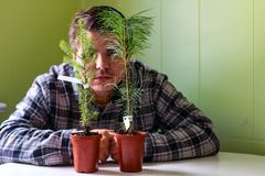 Young man aged 20 to 25 hiding behind two tiny trees that are ready to be planted. concept of environmentalist royalty free stock image