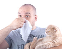 Young man allergy and cat royalty free stock photos