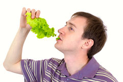 The young man is appetizing eats green salad Royalty Free Stock Photo
