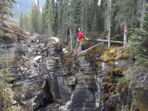 Crossing a canyon on a tightrope. A young man attempting to cross johnston canyon at banff national park stock footage