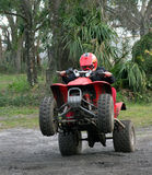 Young Man on ATV. Young man on red ATV doing a wheelie Royalty Free Stock Photography