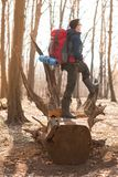Young man with backpack hiking in the forest. Nature and physical exercise concept stock photos