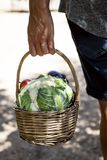 Young man with a basket full of vegetables stock image