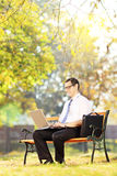 Young man on bench working on a laptop on a sunny day Royalty Free Stock Photography