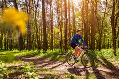 Young man bicyclist riding a road bike in spring forest. In the morning. Active and healthy way of life concept stock image