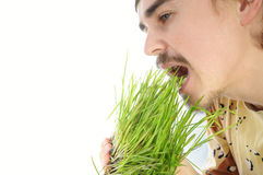 Young man biting green grass Royalty Free Stock Images