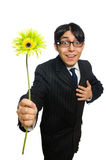 Young man in black costume with flower isolated on Royalty Free Stock Photography