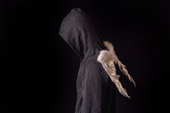 Young man with black hoodie and white feathered wings behind the. Back on a dark background. Conceptual photo, good and bad Royalty Free Stock Photography