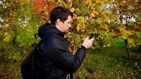 Young man in black jacket walking in the autumn park using his smartphone stock video