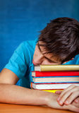 Young Man with the Books Stock Images