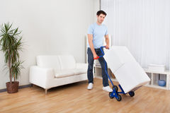 Young Man With Box On Trolley Royalty Free Stock Images