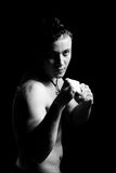 Young man boxer Royalty Free Stock Image
