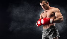 Young man boxer concentrating before decisive fight. On ring, black background, copy space royalty free stock image