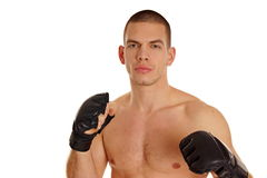 Young man with boxers. Portrait of young athletic man shirtless with boxers Royalty Free Stock Photography