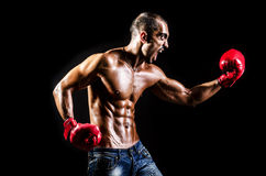 Young man with boxing gloves Royalty Free Stock Photography