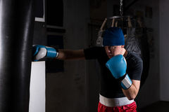 Young man in boxing gloves training with boxing punching bag Royalty Free Stock Photo