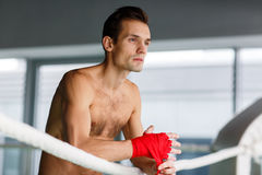 Young man in boxing ring Royalty Free Stock Image