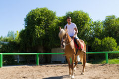 Young man on a brown-blond horse in the riding Stock Photography