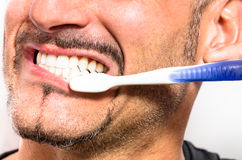 Young Man brushing white perfect Teeth with a Toothbrush. Detail of the mouth of a young man brushing white perfect teeth with a toothbrush Stock Image