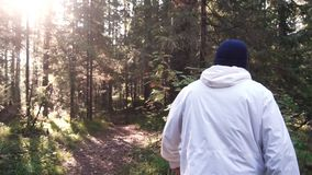 Young man on camping trip. Concept of freedom and nature. View of man from back walking in woods along path on sunny. Autumn day royalty free stock image