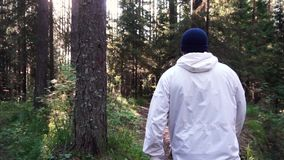 Young man on camping trip. Footage. Concept of freedom and nature. View of man from back walking in woods along path on. Sunny autumn day stock video footage