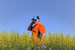Young man in a canola field Royalty Free Stock Images