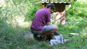 Young man caressing a dog on chain stock video footage