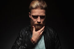 Young man caressing his beard. Casual young man touching his long beard and looking into the camera with a serious expression. on a dark studio background Royalty Free Stock Photos