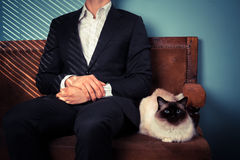 Young man and cat relaxing on sofa Stock Image