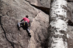 Young man climbing in Quebec. Young man climbing a crack in Quebec Stock Images