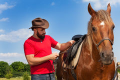 Young man in cowboy hat saddling his brown horse. Young man in cowboy hat saddling his chestnut brown horse at sunny summer day Royalty Free Stock Photography