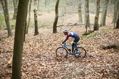 Young man cross-country cycling through a forest Stock Image