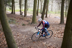 Young man cross-country cycling between trees in a forest Stock Photos