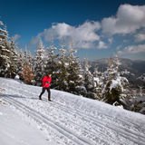 Young man cross-country skiing Royalty Free Stock Image