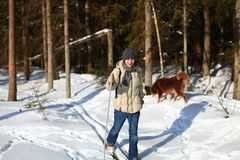 Young man cross-country skiing through the forest. Young man cross-country skiing on a sunny winter day through the damaged forest Stock Images