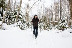 Young man cross-country skiing in the forest. Cross-country skiing: man cross-country skiing in the forest in winter Stock Photos