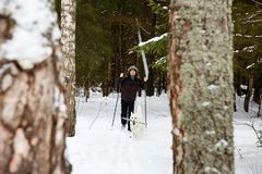 Young man cross-country skiing in the forest with White dog. Young man cross-country skiing in the forest with White Swiss shepherd dog Stock Photo