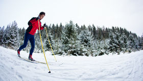 Young man cross-country skiing on a snowy forest trail Stock Image
