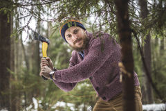 Young man is cutting christmas tree in the wood Royalty Free Stock Images