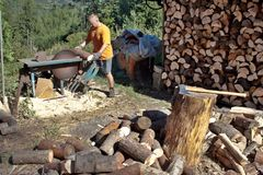 Young man cutting firewood, preparing for winter Stock Photos